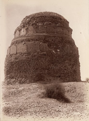Moro, Sindh. Thul Rukan (Buddhist Mound) near Moro, with bush in front